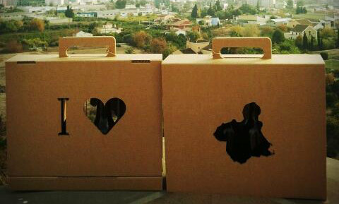 elsaborencaja_cartonlab_packaging_01