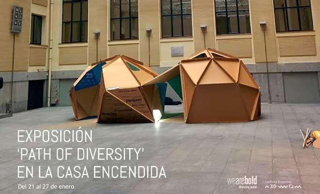 cartonlab_sendero-diversidad_cupula-carton_04