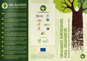 exposición-medio-ambiente-cartonlab-forest-carton-06