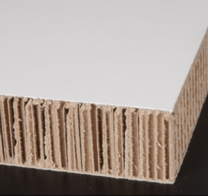 carton xanita tipos de carton resistente diseño