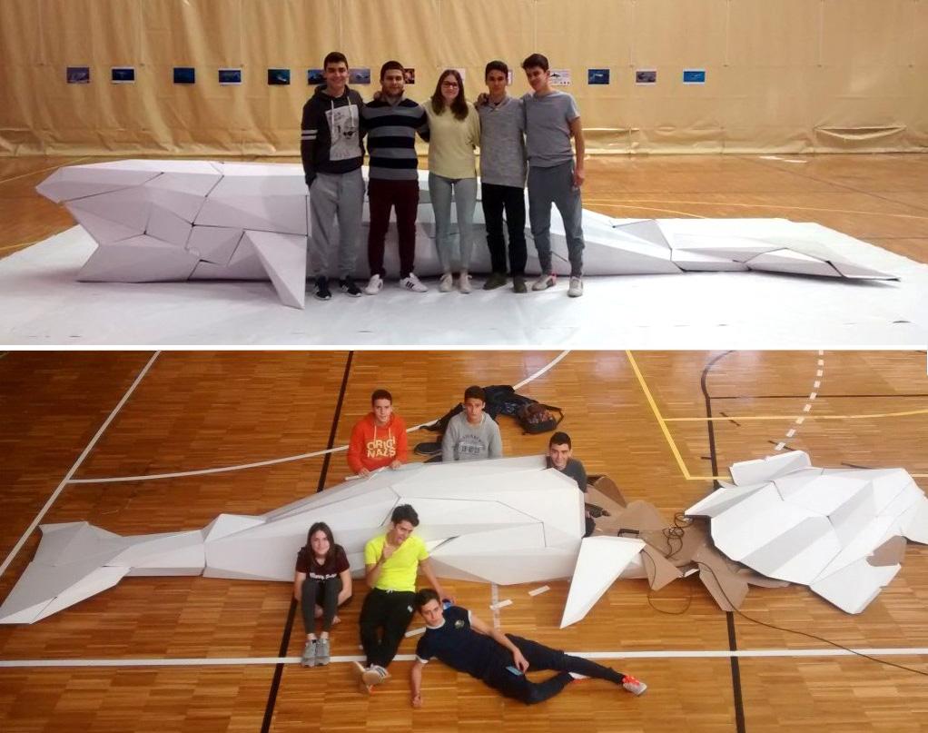 ballena-cartón-semana-ciencia-cartonlab