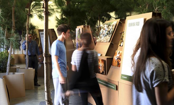 exposición-medio-ambiente-cartonlab-forest-carton-02