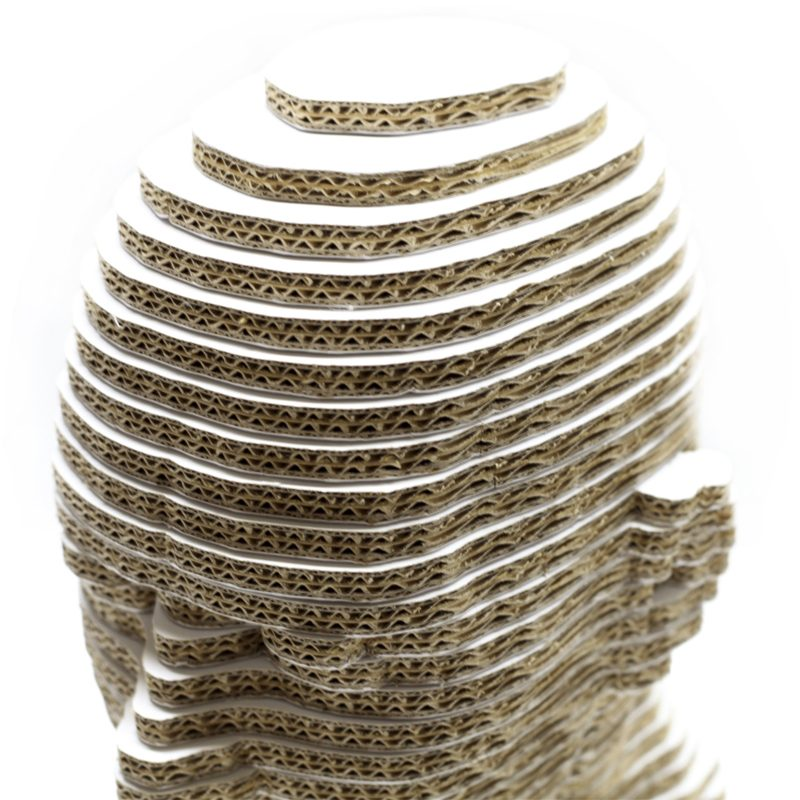 figura corporea ficticio cabeza cartón