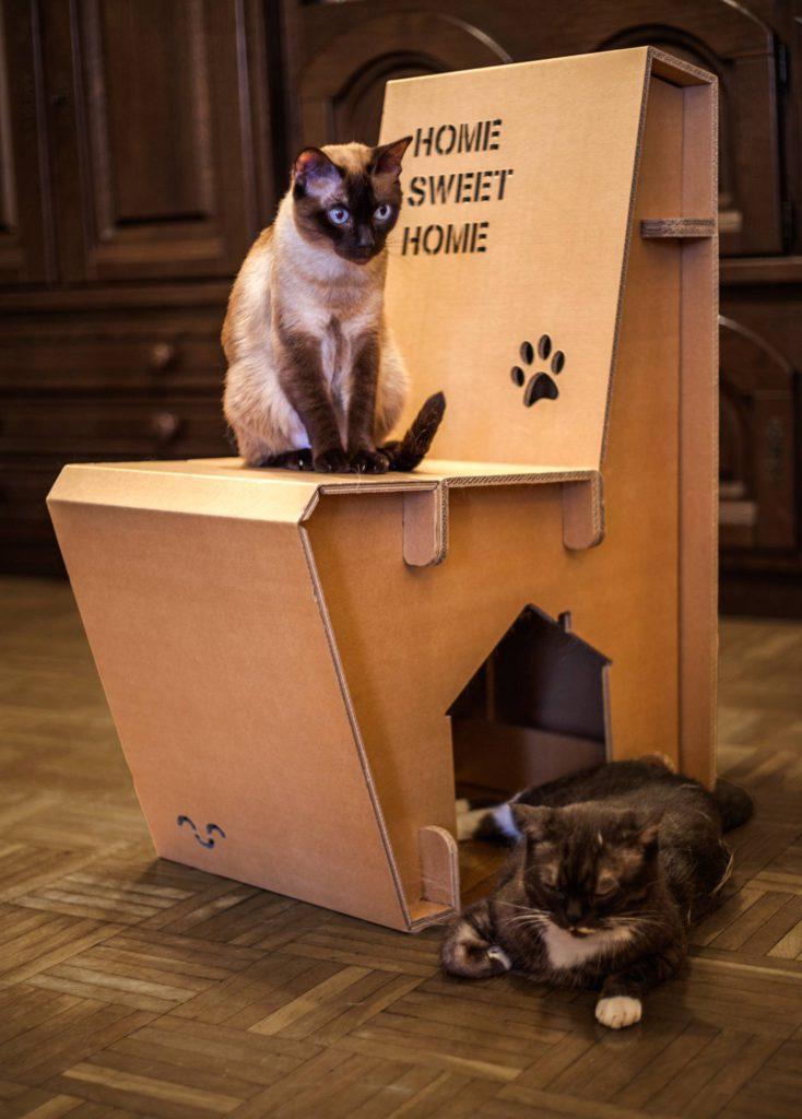 casa silla gatos cartonlab carton