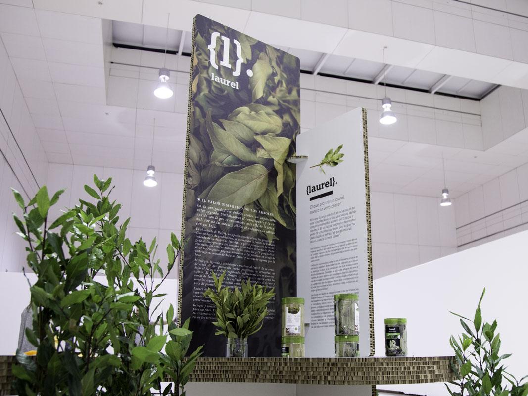 producción y diseño para exposiciones en cartón